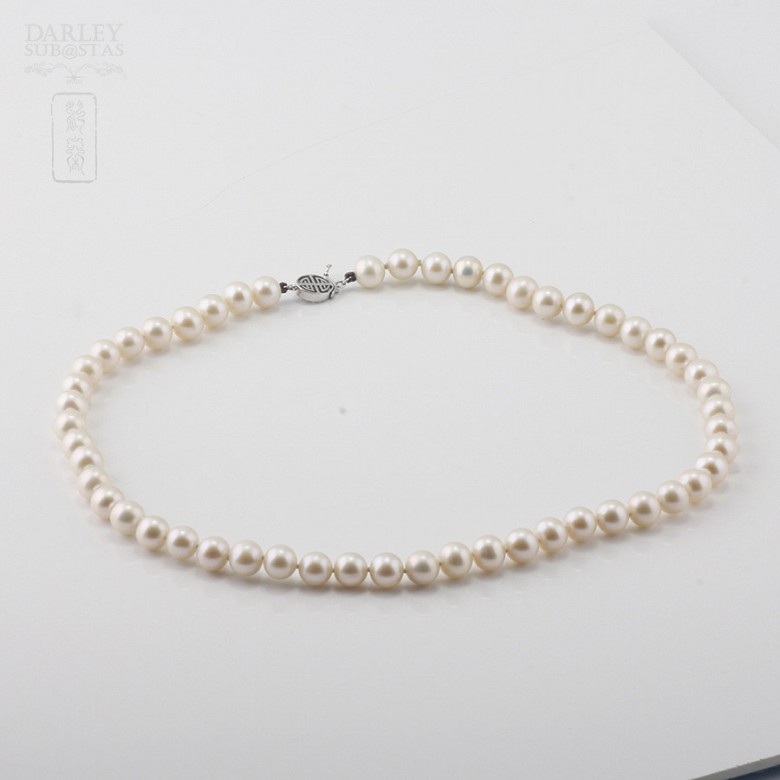 Necklace with Natural pearls and closure 14K white gold - 1