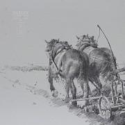 Conrado Meseguer Muñoz  3 Litografías - 6
