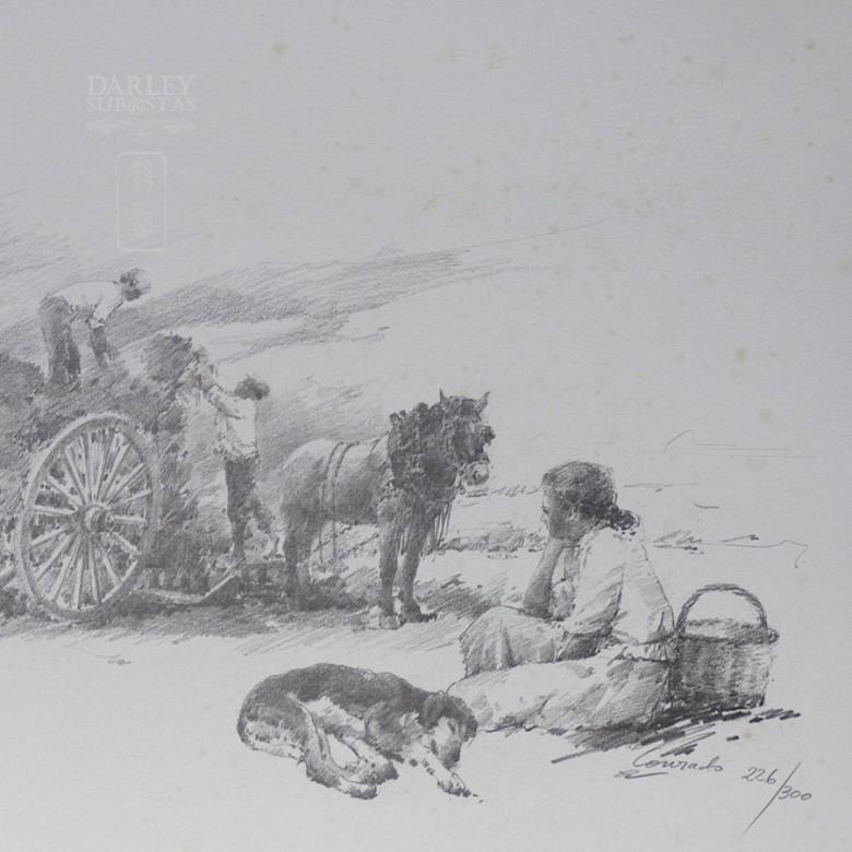 Conrado Meseguer Muñoz  3 Litografías - 4