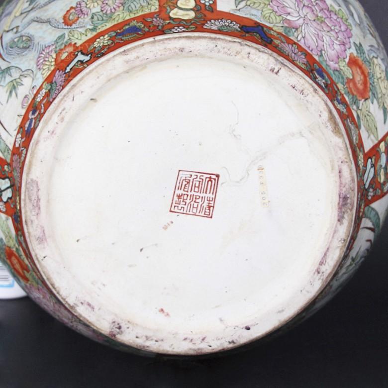 Pecera China - 3