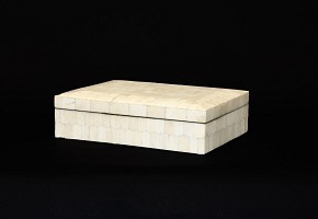 Box with bone applications