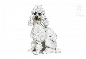 An Algora porcelain poodle, 20th century